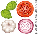 Four types of vegetables on white background 50127278
