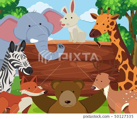 Wild animals around wooden board 50127335
