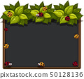 Blackboard with ladybugs and leaves 50128136