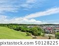 夏天藍天和townscape 50128225