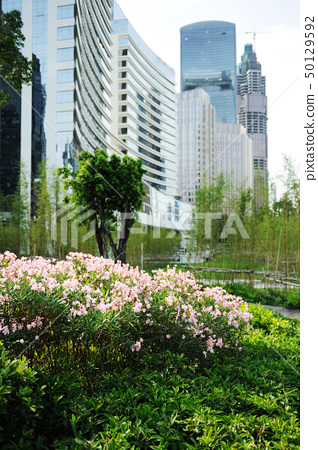 Flowers before modern buildings background 50129592