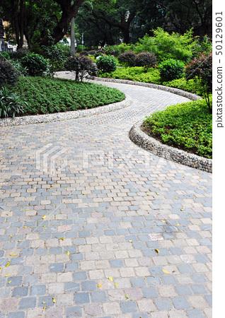 Road in garden 50129601