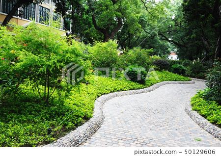Road in garden 50129606