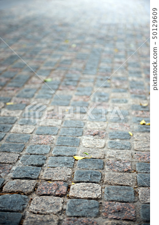 Flag stone path 50129609