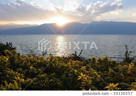 Lake sunset landscape 50130357