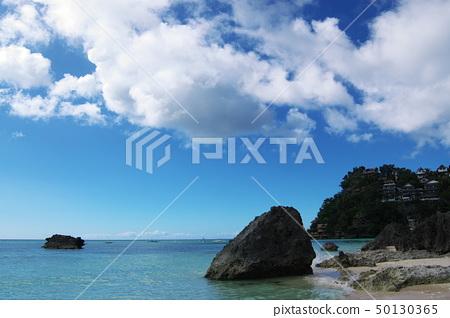 Beach and Ocean 50130365