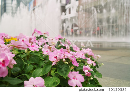Flowers with fountain background 50130385