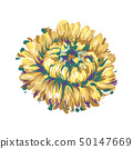 Luxurious decorative vector yellowAster flower for floral decoration, embroidery 50147669