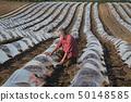 农民 农夫 西瓜 50148585