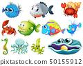 Set of sea creature 50155912
