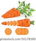Set of carrot pieces on a white background. 50178380