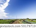 밭 (봄) 50179719