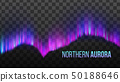 Realistic Colorful Northern Aurora Light Vector 50188646