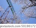 와카야마 현 난키 시라하마 어드벤처 월드의 벚꽃 50190172