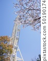 와카야마 현 난키 시라하마 어드벤처 월드 체리 관람차 50190174