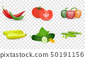 Vegetables Set Vector Illustration. Tomato, green cucumbers, peppers, zukini and pea pod. Isolated 50191156