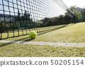 tennis ball on the grass 50205154