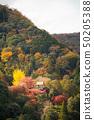 오카 치 산장의 가을, 大堰川 건너편에 아라시야마 중턱의 센 코지를 임하는 50205388