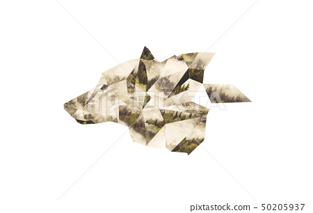 Wolf Head os a Collage from Polygons with wood 50205937