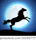 Silhouette of horse on the moon background 50206777