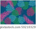 열대 몬스 테라 무늬 배경 일러스트 (진한 색상) | 여름의 이미지 | 배경 벡터 데이터 50210329