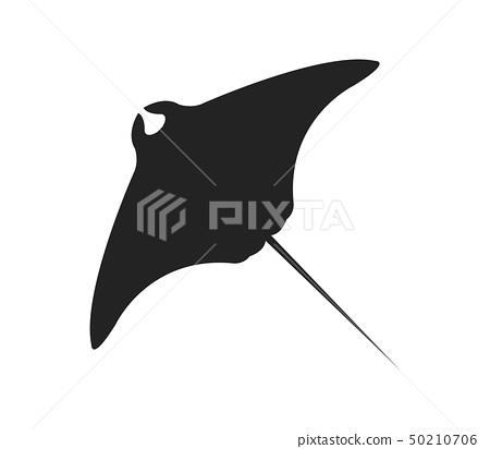 fish manta icon 50210706