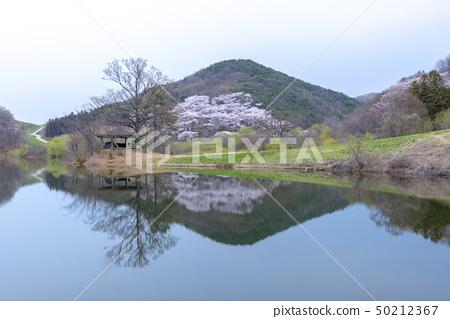 용유지,서산시,충남 50212367