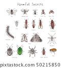 다양한 해충 수채화 풍 필기 일러스트 50215850