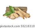 Eurycoma longifolia with green leave  50216310
