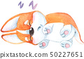 Hand drawn watercolor illustration with cute little orange corgi dog puppy sleeping and smiling 50227651