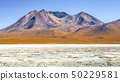 Frozen lagoon of altiplano with mountain peak on background. Bolivia, South America 50229581