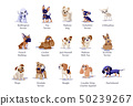 Vector illustration of dogs puppies different bree 50239267