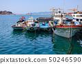 the fall of the beautiful Cheongsan Island sea 50246590