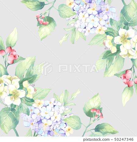 水彩花卉組合和優雅的繡球花 50247346