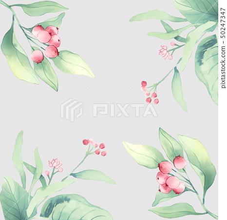 水彩花卉組合和優雅的繡球花 50247347