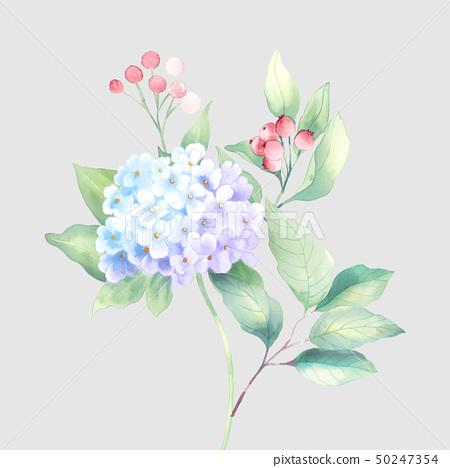 水彩花卉組合和優雅的繡球花 50247354
