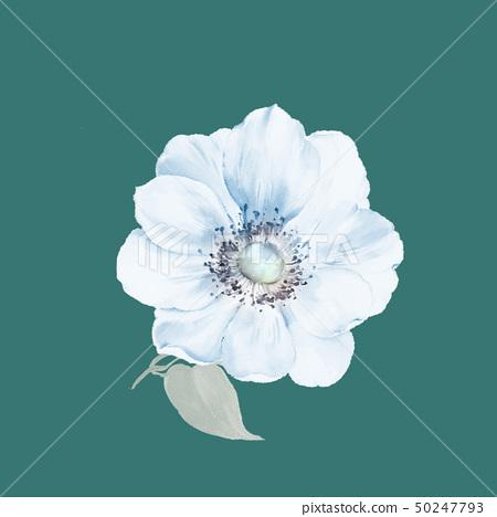 春天的色彩水彩花卉 50247793