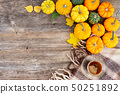 Fall leaves autumn background 50251892