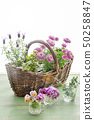 Flowers and basket 50258847