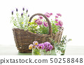 Flowers and basket 50258848