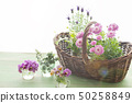 Flowers and basket 50258849