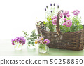 Flowers and basket 50258850