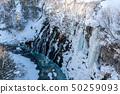 Shirahige Waterfall inthe Shirogane 50259093