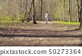 Woman walking with bernese shepherd dog puppies 50273364