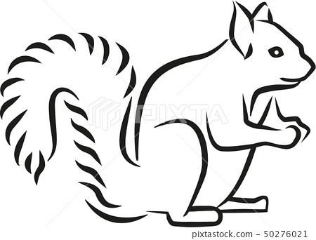 squirrel_drawn.eps 50276021