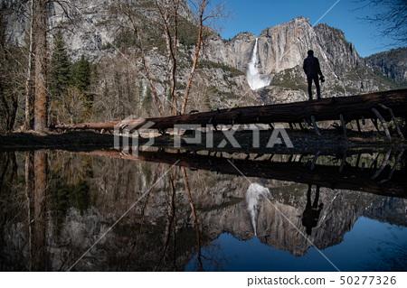 Photographer standing in Yosemite national park 50277326