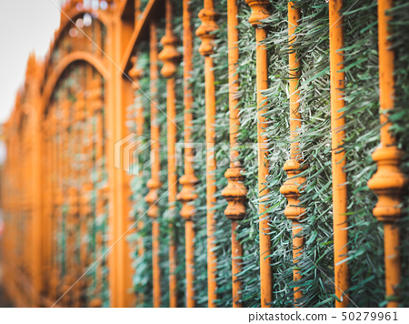 Metal fence in the city 50279961