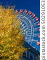 코호 뉴타운 센터 북부 은행 나무 단풍 50291053