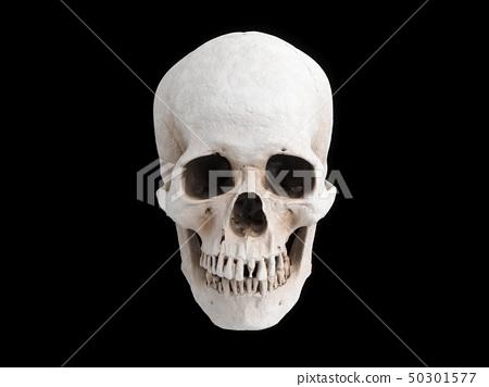 3D rendering skull isolated 50301577