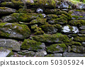 pebble wall with moss, National Park, County 50305924